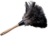 Feather Duster